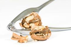треснутый грецкий орех Стоковые Изображения