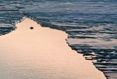 Треснутый лед Стоковое Изображение