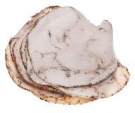 треснутый индюк перца мяса обеда Стоковые Фотографии RF