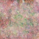 треснутый камень утеса мха цветков Стоковое фото RF