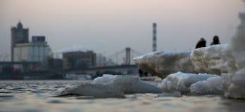 Треснутый лед на реке весной Стоковые Изображения