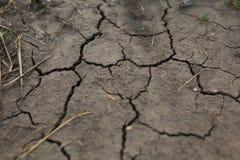 треснутый от горячего солнца, земля, засуха, глобальное потепление Стоковые Фото