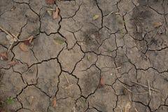 треснутый от горячего солнца, земля, засуха, глобальное потепление Стоковые Изображения RF