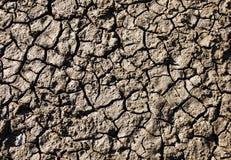 треснутый район неорошаемого земледелия Стоковые Фото