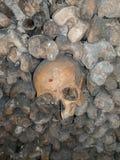 Треснутый череп Стоковое фото RF