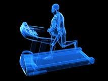 третбан избыточного веса человека Стоковая Фотография