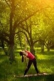 Треугольник представления йоги выдвинутый Стоковая Фотография