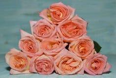 Треугольник роз Стоковая Фотография