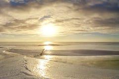 Трещина на озере марш Солнце весны стоковые изображения