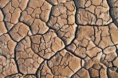 Трещиноватость линий в почве Стоковая Фотография