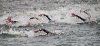 Триатлон, заплывание, люди Стоковая Фотография