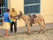 Тринидад, Куба - эскиз жанра с ослом Стоковая Фотография