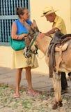 Тринидад, Куба - эскиз жанра с ослом Стоковые Изображения RF