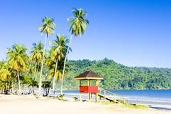 Тринидад Стоковые Изображения RF