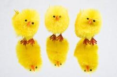 трио игрушки цыпленоков Стоковые Изображения RF