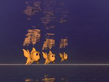 трио goldfish Стоковое фото RF