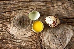 Триперстки egg Стоковые Изображения RF