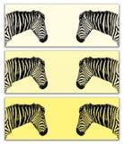Триптих зебры равнин в желтых тонах Стоковые Изображения
