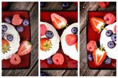 Триптих диска плодоовощ лета Стоковое Изображение RF
