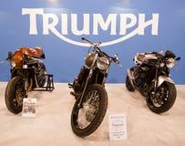 триумф стойки eicma 3 2010 bikes Стоковые Изображения RF