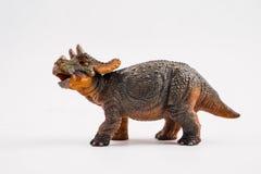 Трицератопс младенца, динозавр на белой предпосылке стоковое изображение rf