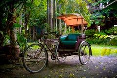 трицикл Стоковые Изображения RF