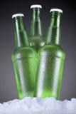Троица пива Стоковые Изображения RF