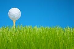 тройник травы гольфа поля шарика Стоковое Фото
