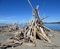 тройник pee деревянный Стоковая Фотография RF