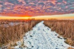 Тропа ландшафта зимы через болото Стоковое фото RF