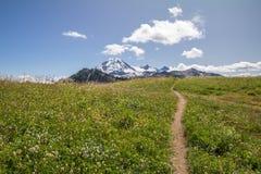 Тропа вдоль границы горизонта водит к взглядам хлебопека Mt Стоковые Фото