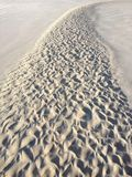 Тропа воды Стоковые Фотографии RF