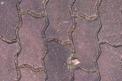 Тропа вымощенная бетонной плитой, предпосылка Стоковое фото RF