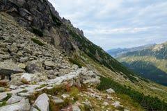 Тропа в высоком Tatra Стоковые Фото