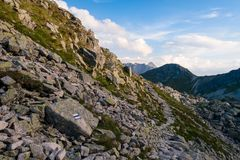 Тропа в высоком Tatra Стоковые Изображения RF