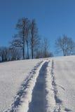 Тропа в глубоком свежем снеге стоковая фотография rf