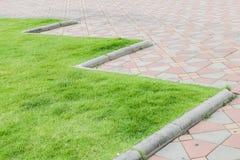 Тропа в зеленом парке Стоковое фото RF