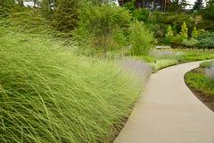 Тропа вдоль RBG& x27; сад утеса s новый Стоковая Фотография