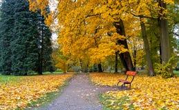 Тропа в парке замка Стоковые Изображения