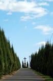 тропа кладбища Стоковые Изображения RF