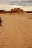 Тропа к дюне в треске накидки Стоковая Фотография RF