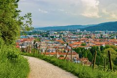 Тропа на виноградниках на холме Piramida и городском пейзаже Мариборе Словении стоковые изображения