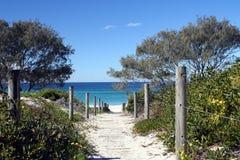 тропа пляжа к стоковая фотография rf