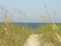 тропа пляжа Стоковые Фото