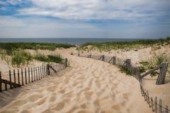 Тропа пляжа трески накидки в Provincetown Массачусетсе Стоковое Изображение RF