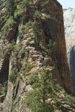 Тропа Сиона к приземляться ангелов Стоковое Изображение