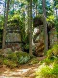 Тропа среди деревьев и утесов в ry Stolowe ³ GÃ в Польше стоковое изображение rf