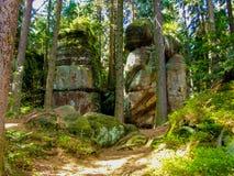 Тропа среди деревьев и утесов в ry Stolowe ³ GÃ в Польше стоковые фотографии rf