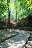Тропа среди руин на Palenque стоковая фотография rf