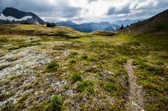 Тропа через горы Стоковые Фотографии RF